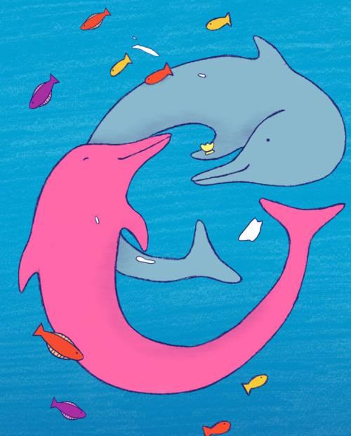 Famiglie Favolose pinky il delfino rosa